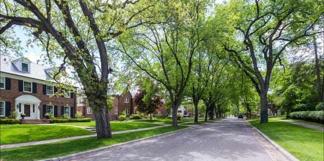 country-club-edina-neighborhood-street-view
